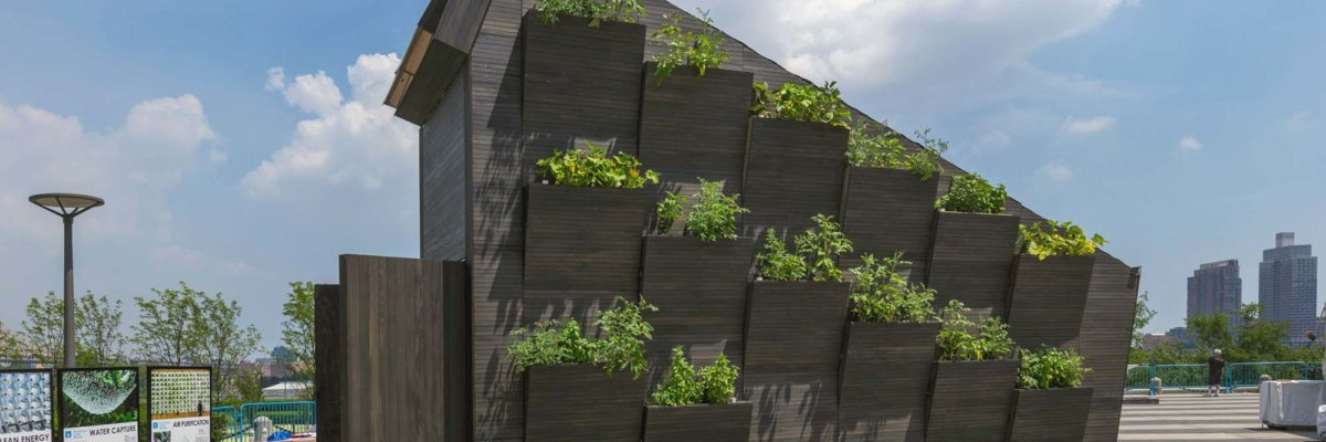 Self sufficient home: The three exterior walls have also been turned into an ecological design feature