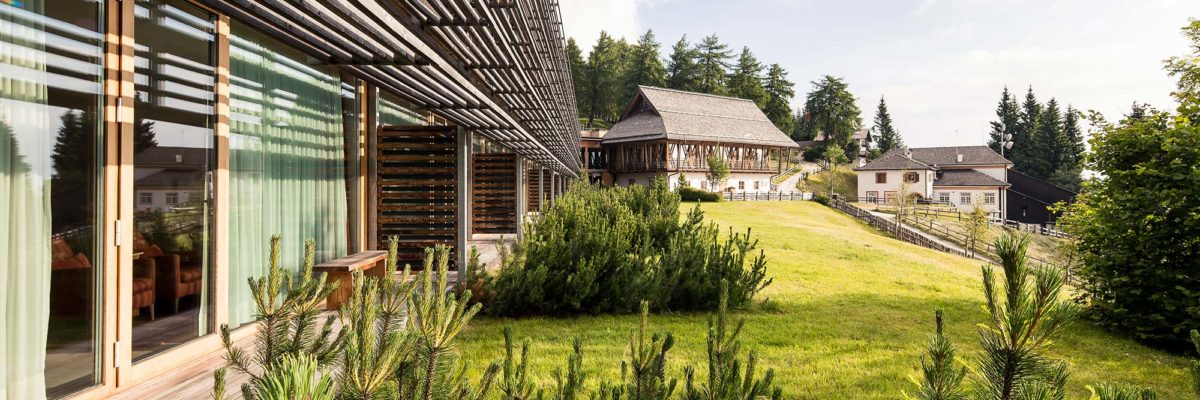 sustainible architecture, ressort next to the forest