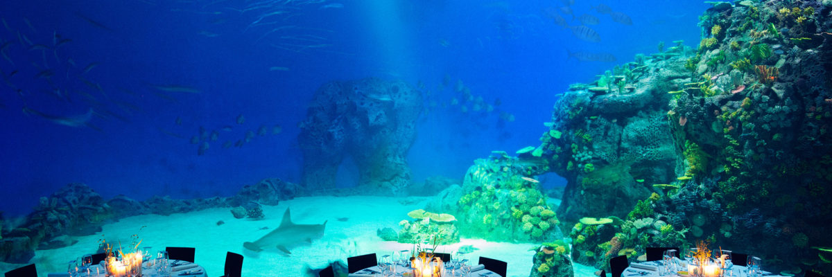 Restaurants are examples for underwater Buildings.