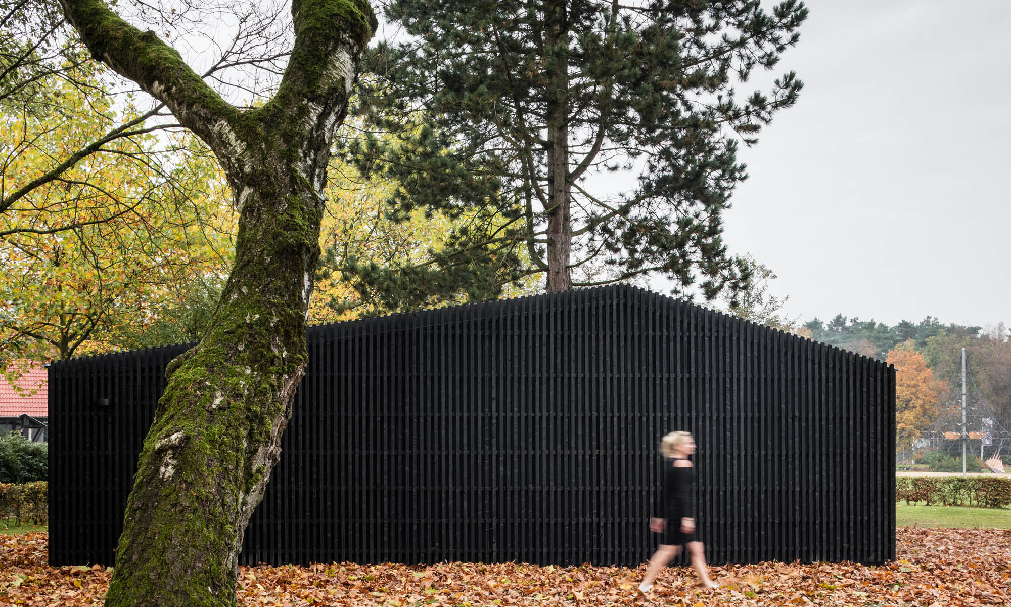 Black wooden house in the middle of nature